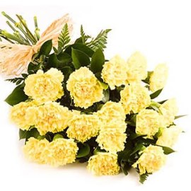 20 Yellow Carnations