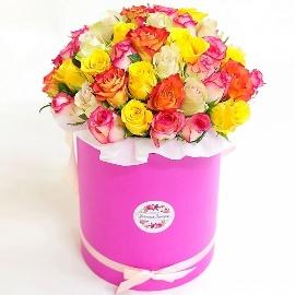 Multi-color Roses